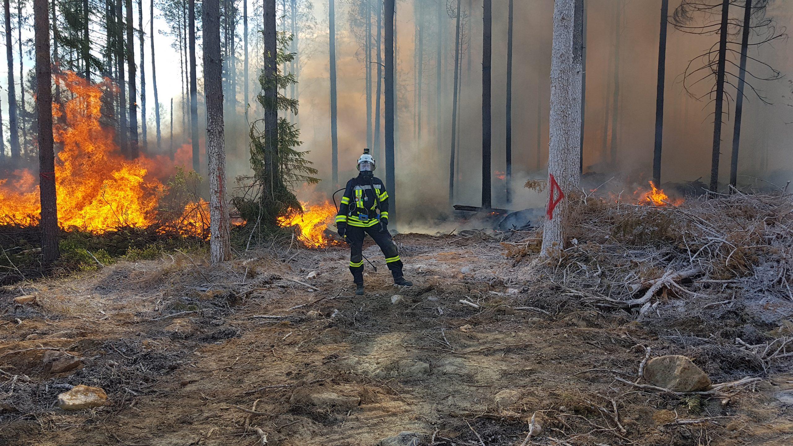 Pelastusopiston metsäpalohanke
