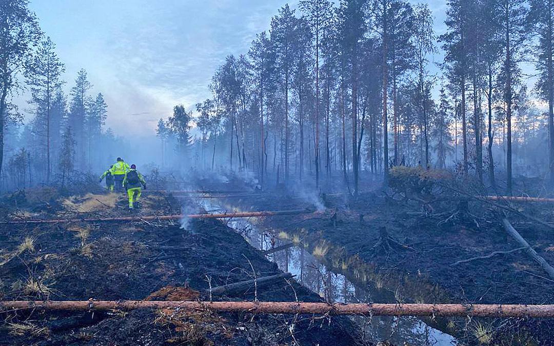 Sammuttajat sammuttavat metsäpaloa Kalajoella.